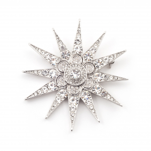 Star Statement Brooch