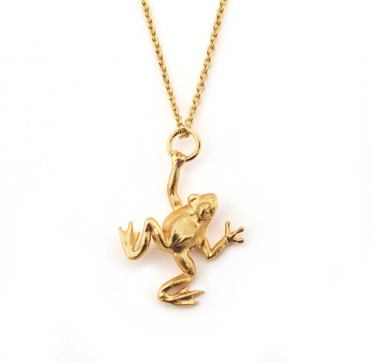 golden product apparel heritage necklace frog house pendant