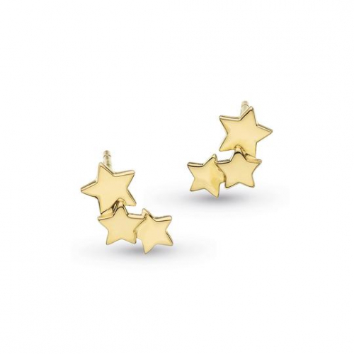 Silver Stargazer Galaxy Gold Plated Earrings