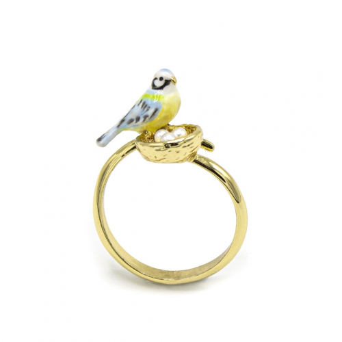 Blue Tit & Nest Ring