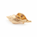 Alternate Image For Statement Conch Shell Brooch